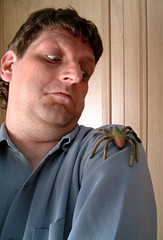 Arachnophobia - a man with a spider on his shoulder