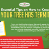 Thumbnail image for 7 Tips on how to know whether your tree has termites